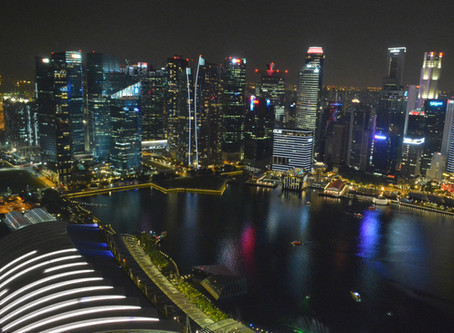 A Learning Trip to Singapore