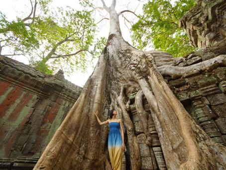 Cambodia - Siem Reap vol. 4 (World Trip Day 27)