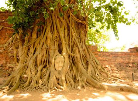 Thailand - Ayutthaya (World Trip Day 43)