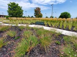 Land Run Sculpture Park Improvements