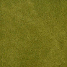SUEDE LEATHER LODEN