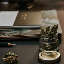 blur-bud-cannabis-1466335_edited