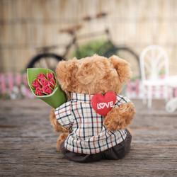 bear-beautiful-concept-1028729_edited