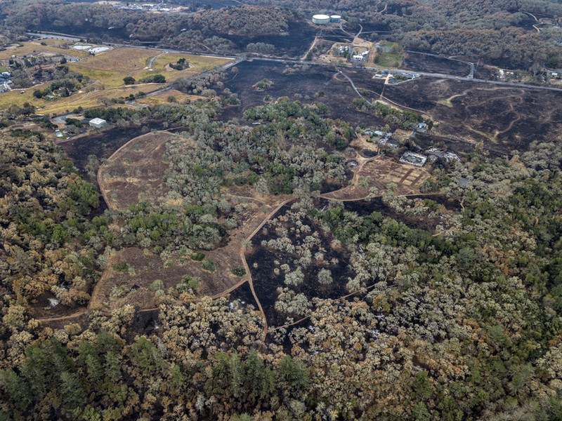 Drone image showing areas treated with controlled burn at Bouverie Preserve during the 2017 Nuns fire