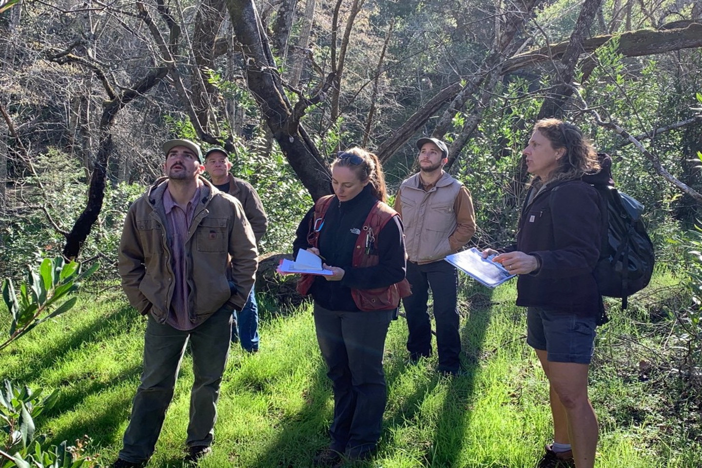 Collaborative partners meet with foresters at Bouverie Preserve