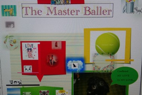 The Master Baller Artwork