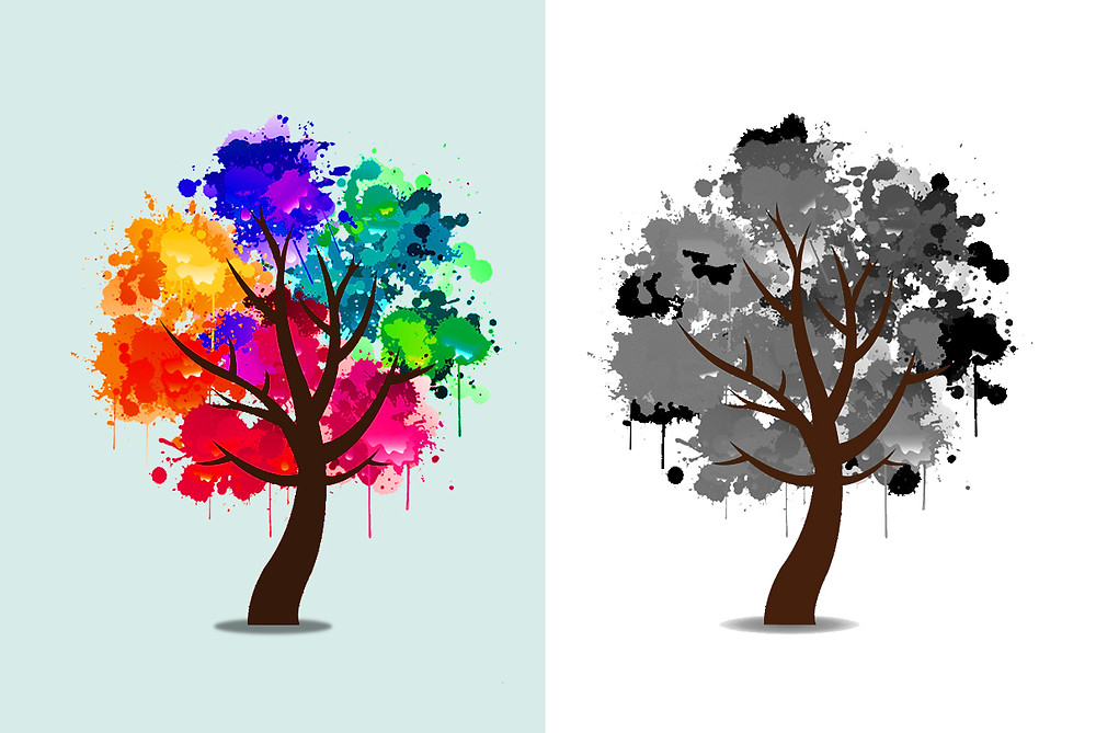 Color Influences the Meaning of Design