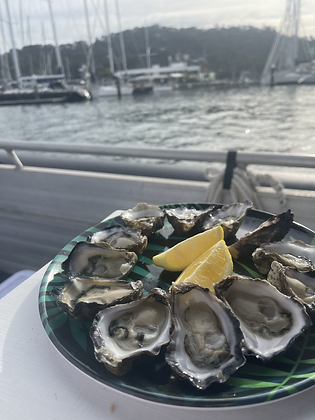 1 Doz Sydney Rock Oysters - 24 hour preorder only