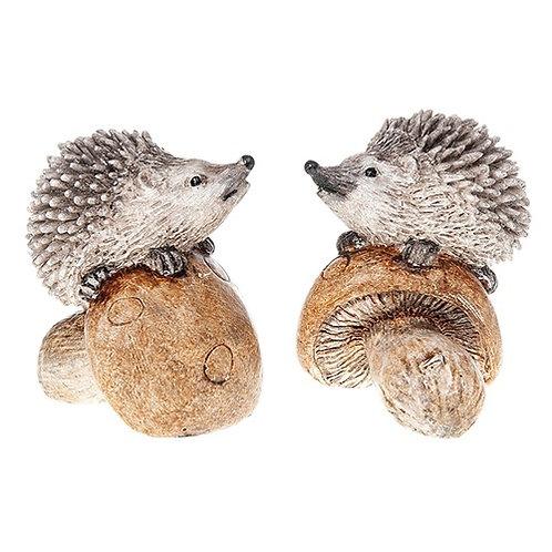 Country Hedgehogs on Mushroom