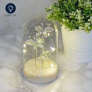 Jewel Butterfly Light Up LED Large Cloche 17.5cm