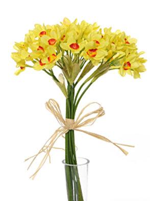 Daffodil Bush Tete A Tete