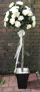 Ivory Rose Trees | Available to hire | All occasions | Shropshire
