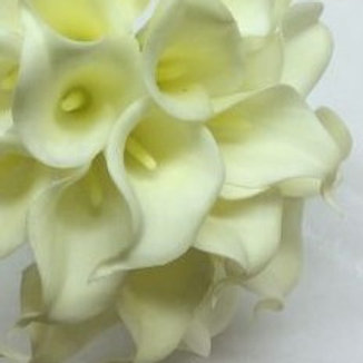 Real Touch Calla Lily - Ivory