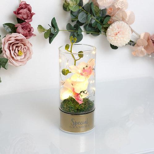 Peaches & Cream Orchid Flowers LED Light - Grandma