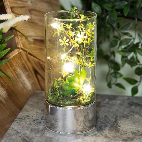 Glass Tube Terrarium - Artificial Succulents and LED's