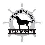 TANLAB logo FINAL.jpg