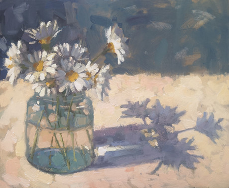 Daisies in Spring Sunshine.jpg