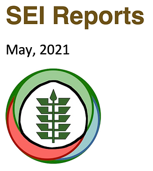 SEI Reports logo sq issue.png