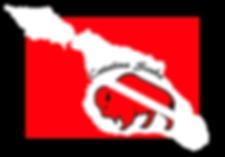 LogoFlag.png