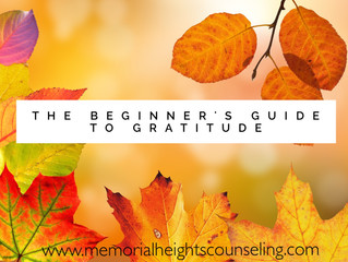 The Beginner's Guide to Gratitude