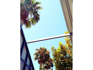 We are enjoying this beautiful summer day here at our Culver City office!!!