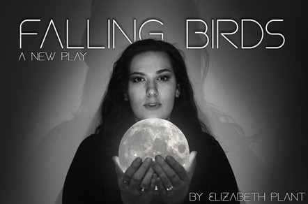 Falling Birds | promotional material