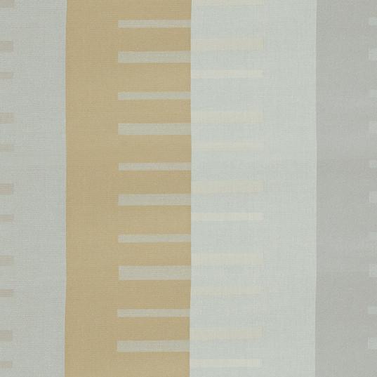Evolution-Frame.jpg
