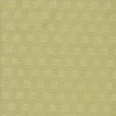 Simplicity-kiwi.jpg