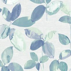 Still Life - Lily-Pond.jpg