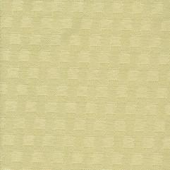 Simplicity-palm.jpg