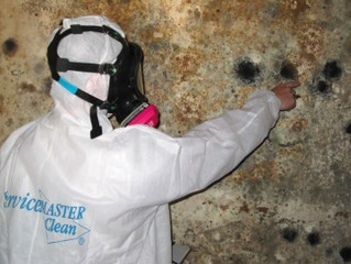 Six Steps to Prevent Mold