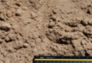 Pit Run Sand.jpg