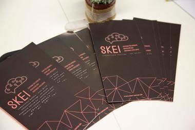SKEI Flyer