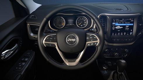 Close Up Steering Wheel-feher.jpg