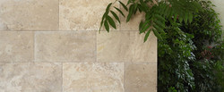 Coffee Travertine - Filled Brushed
