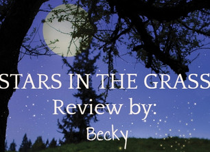Becky's Book Addiction - Blog Review