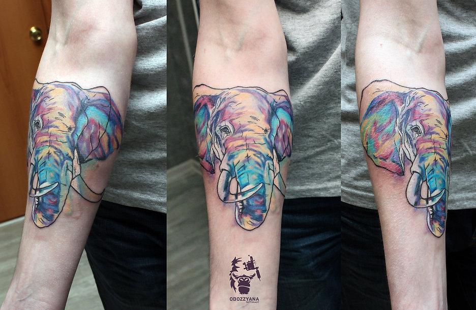 Татуировка в виде слона, слон, тату, слон, цветной слон