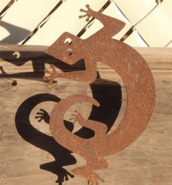 Ground Gecko