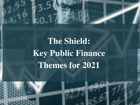 The Shield - Key Public Finance Themes for 2021