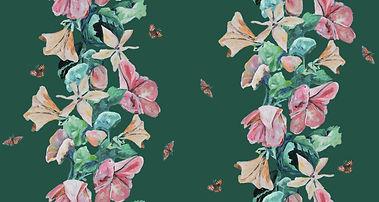 FINAL NEW 2 rows butterflies 245245 Diff