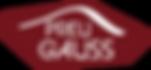 Logo preuniversitario Preu Gauss