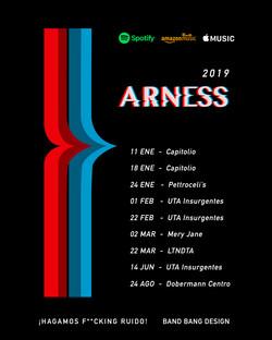 Arness 2019