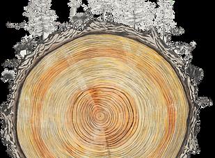 ancestoral-realms-822x1024.png