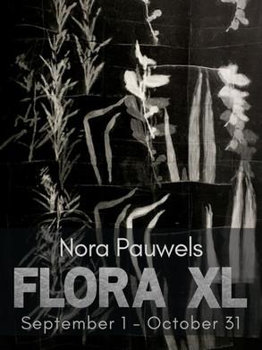 Nora Pauwels: Flora XL