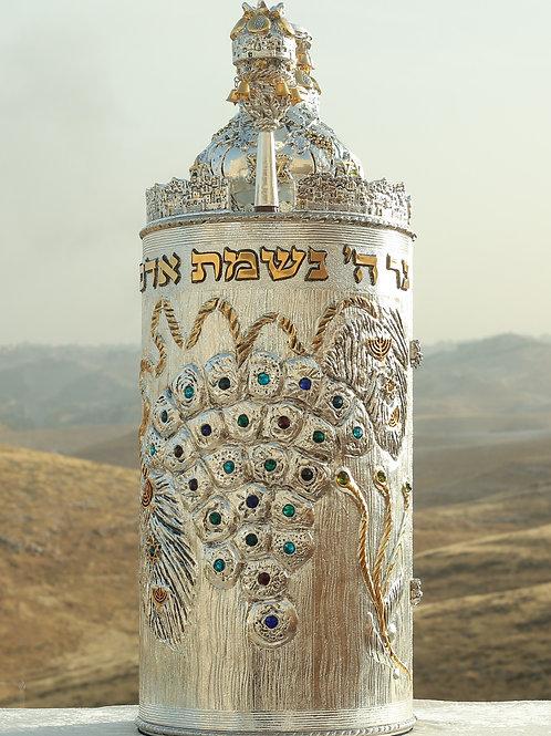 Torah Case-Vineyard of Ashem