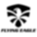 FE logo png.png