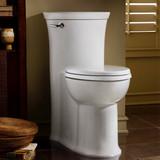 Tropic FloWise 1-Piece 1.28 GPF Single Flush Elongated Toilet