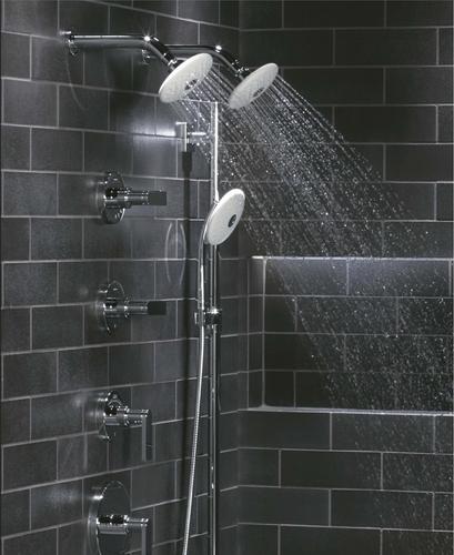 Exhale Multifunction Showerhead