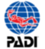 伊豆 ダイビング 伊豆海ダイビングリゾート ダイバー サポート