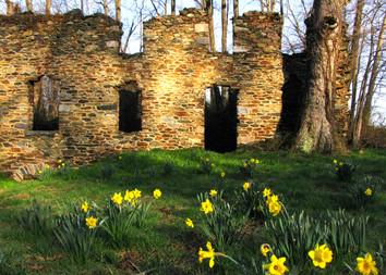 Burnt Mill Ryan.jpg